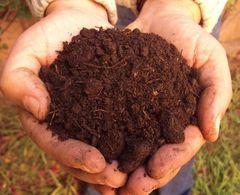 Een handvol compost