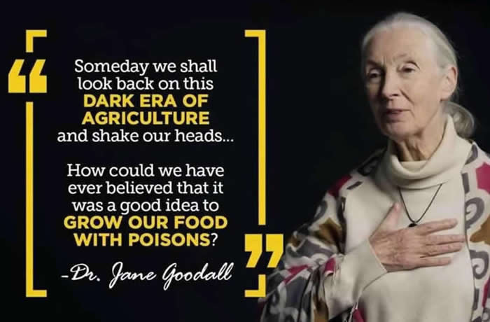 Jane Goodall on Agriculture